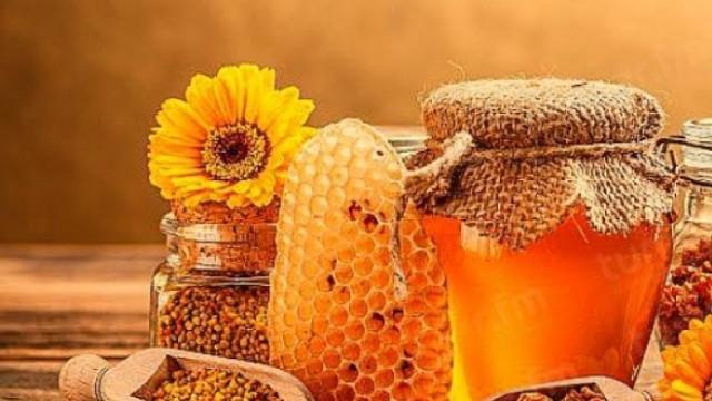 Форум развития сектора пчеловодства-2018