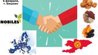 Бизнес-встреча с европейской компанией Nobiles